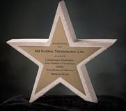 Texas Star Manufacturing Award